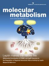 18_01_15_metabolism_cover (2)